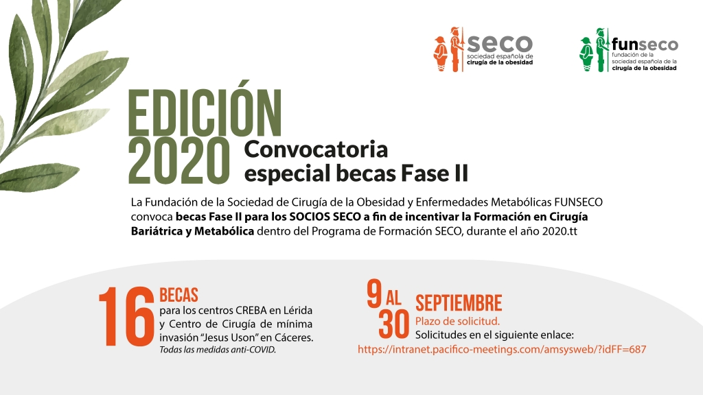 Convocatoria especial becas Fase II Edición 2020