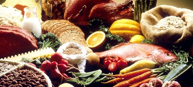 Researchers identify brain circuit linked to food impulsivity