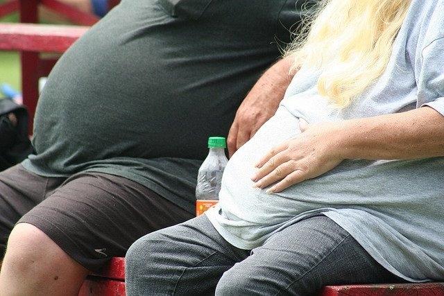 Identifican un 'truco' molecular de nuestros ancestros que puede estar provocando la actual epidemia de obesidad
