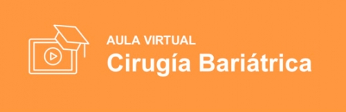 Aula virtual SEEN de cirugía bariátrica